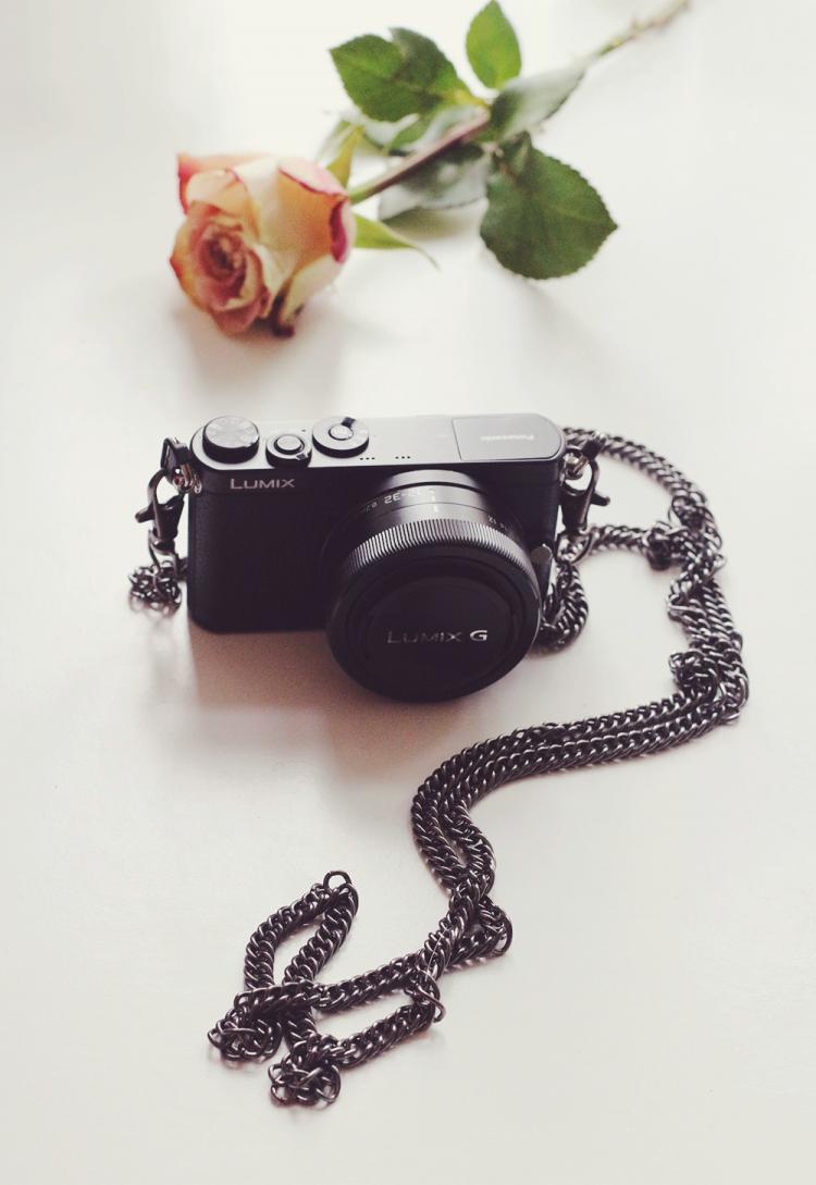 fashion blogger camera