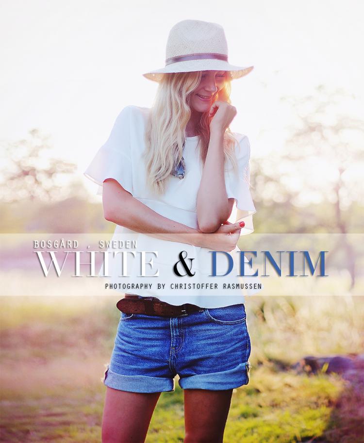 denim-shorts2.png