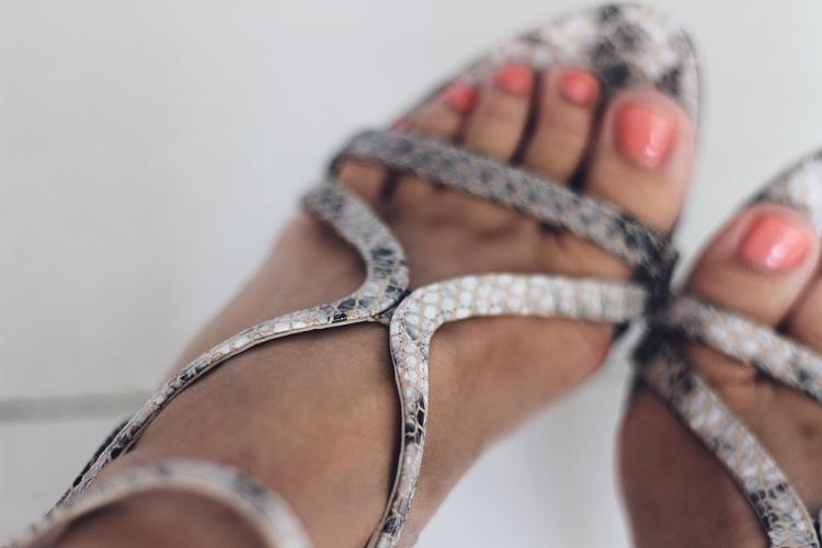 phyton sko