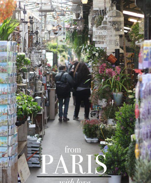 paris-turist@2x1.jpg