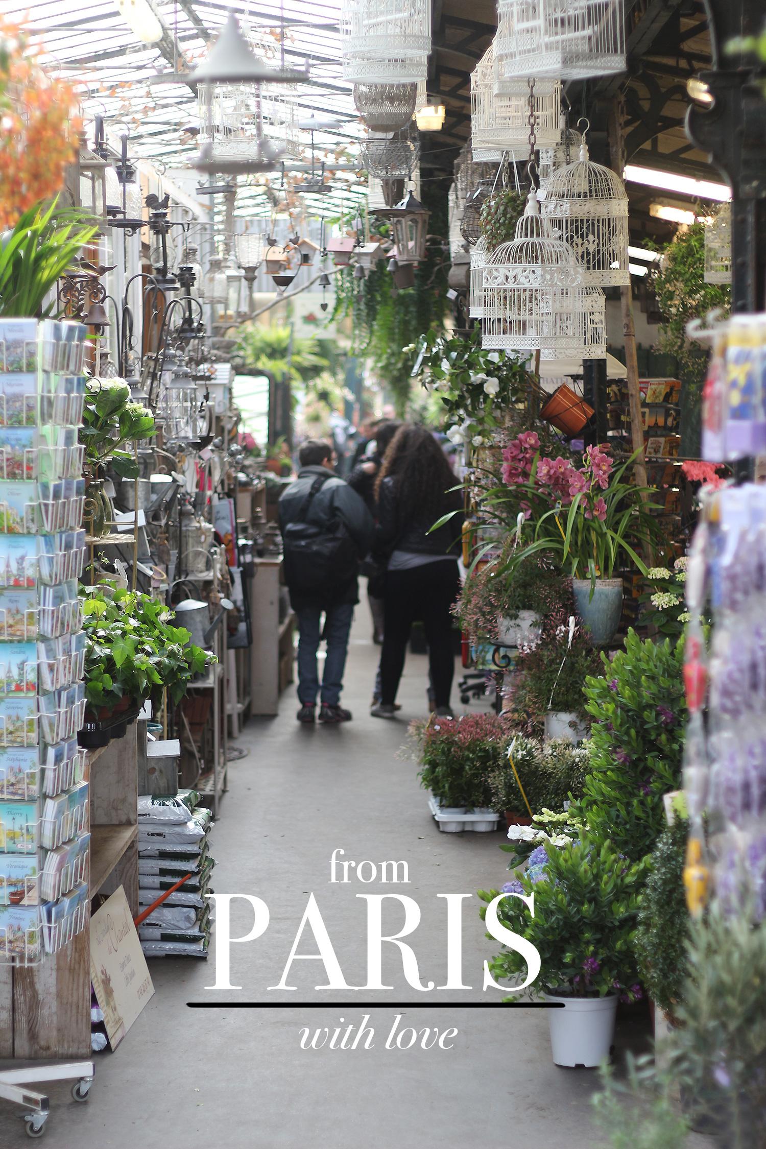 paris-turist@2x