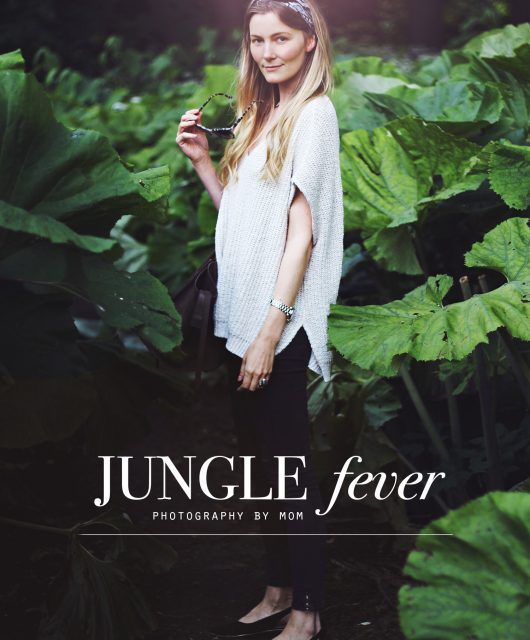 jungle-fever-@2x.jpg