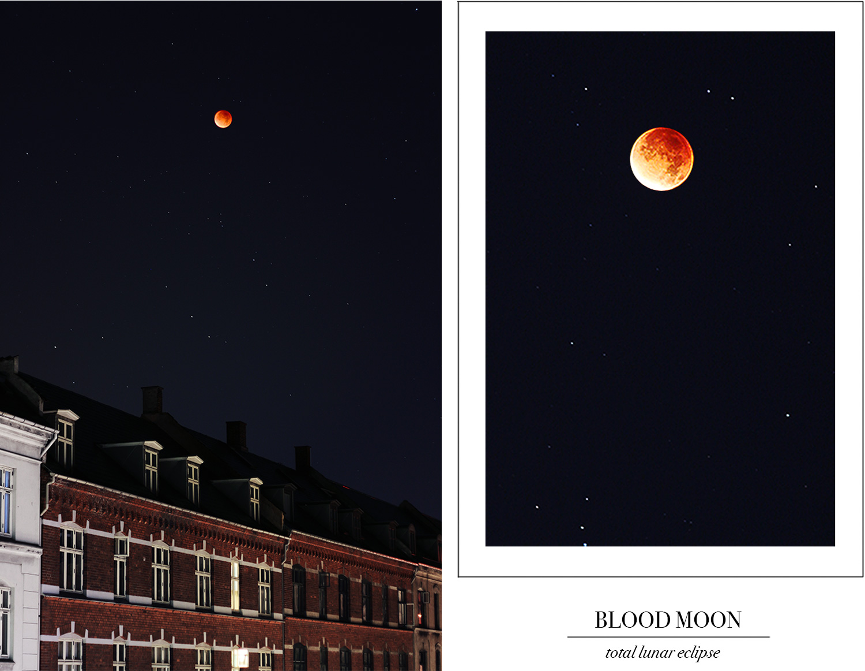 blodmåne@2x