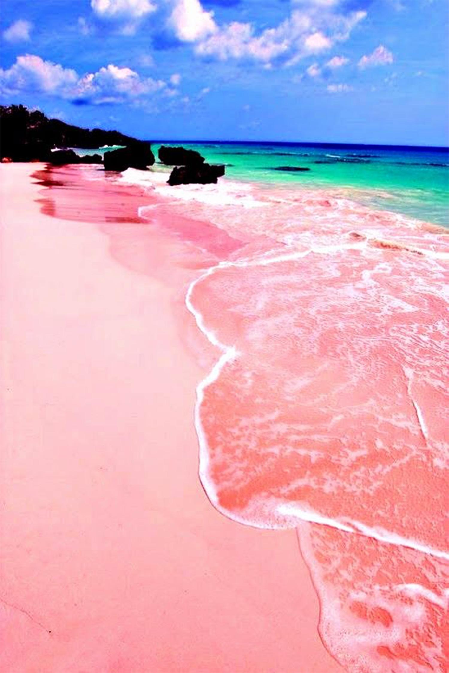 pink-beach-bermuda