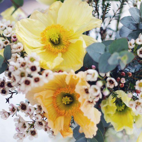 posy-blomster1.jpg