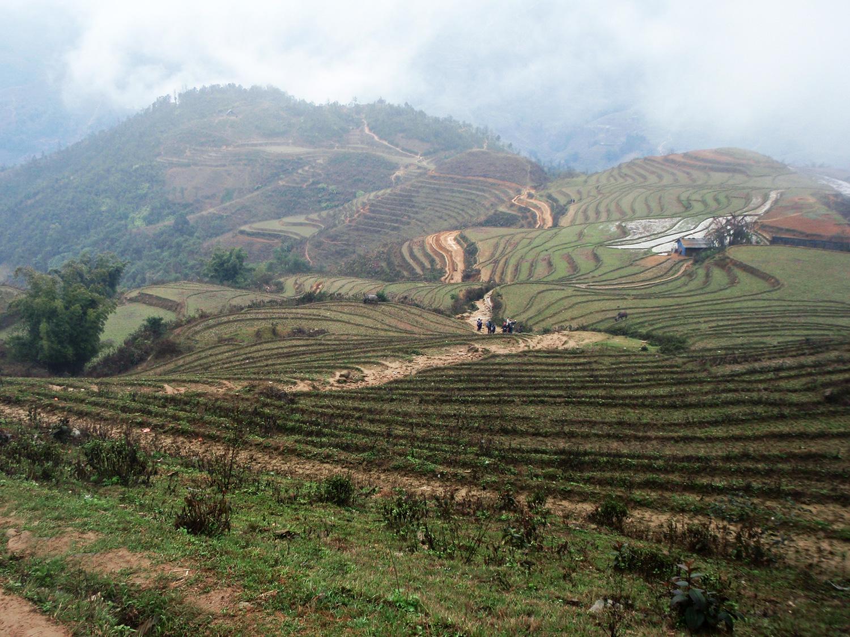 rismarker-vietnam