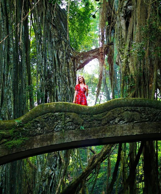 monkey-forest