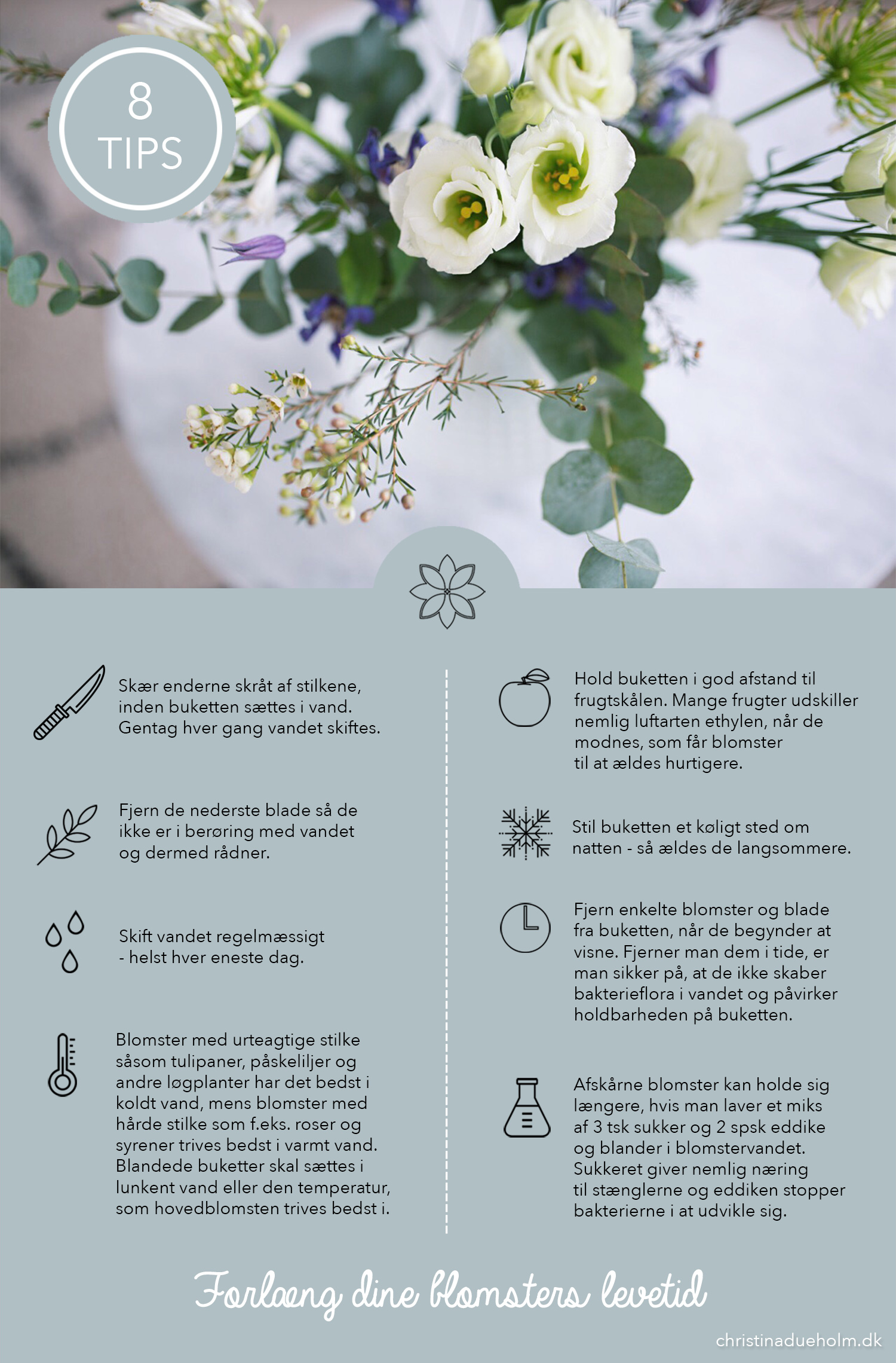 hold-blomster-friske-i-lang-tid