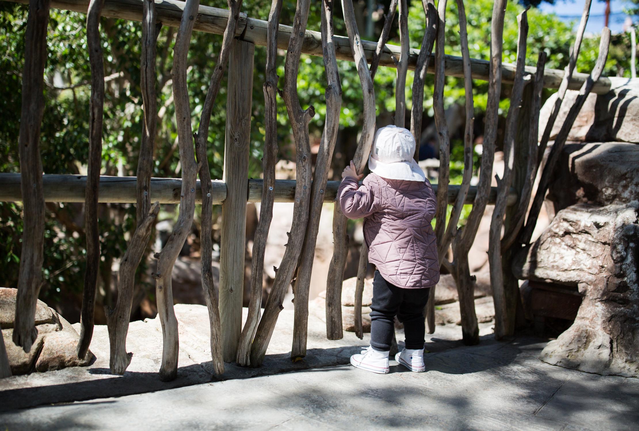 zoo-fuengirola